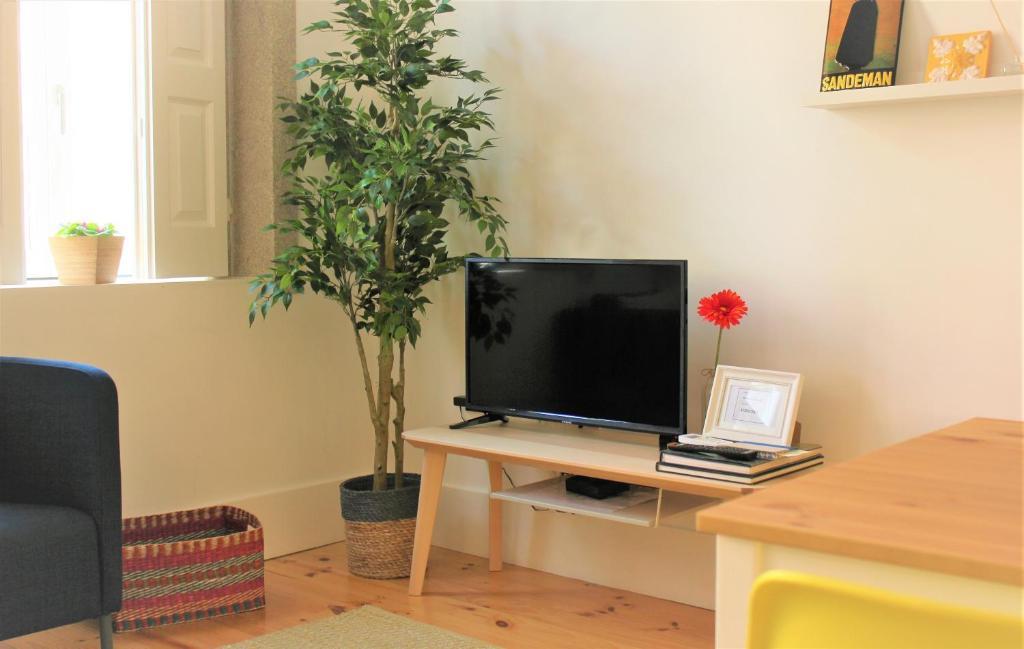 En tv och/eller ett underhållningssystem på Flowers Center