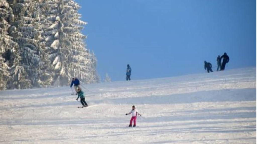 Skiing at the vacation home or nearby