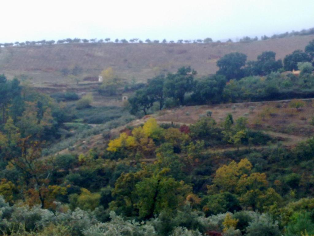 Imagen del Apartamentos Rurales Candela