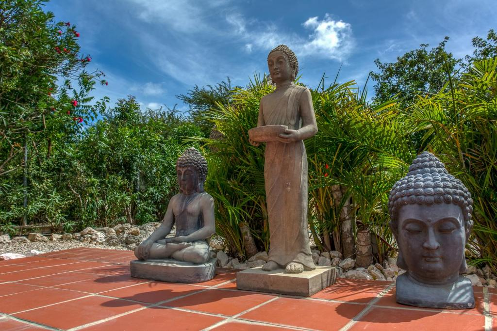 Apartment Buddha Garden Adult Only Willemstad Curaao