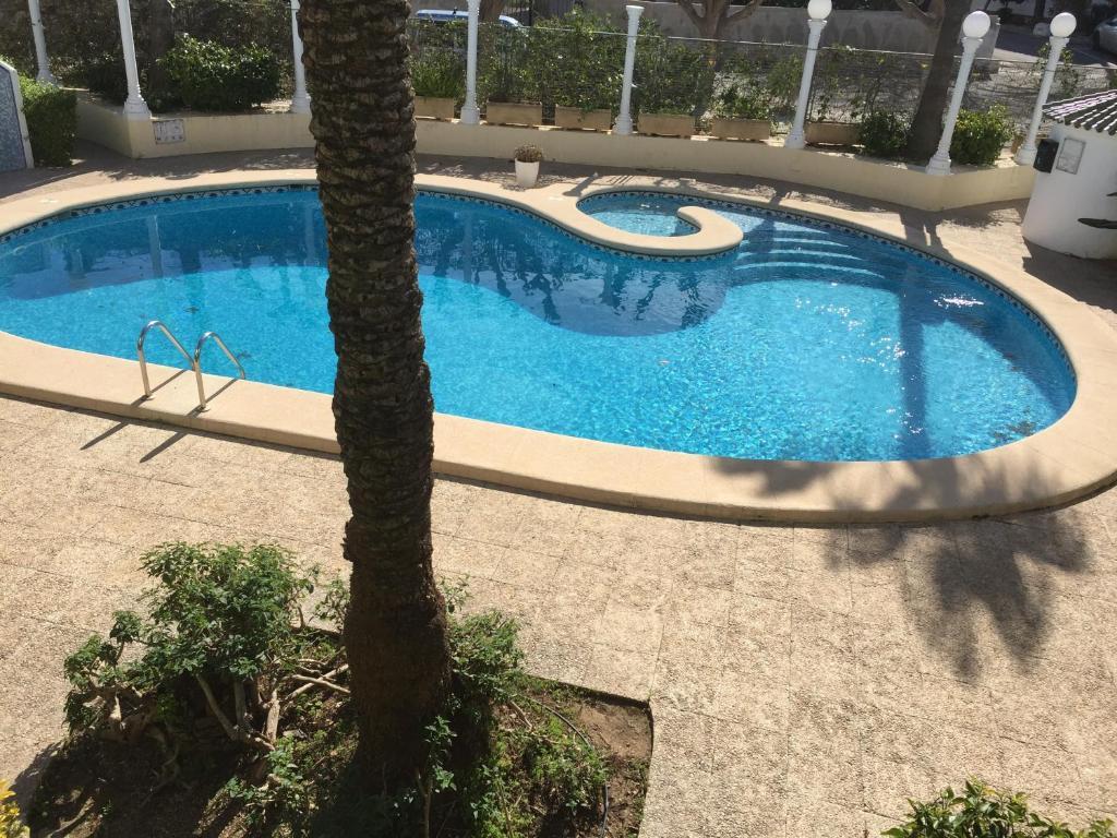 Imagen del Apartamento Oasis Denia