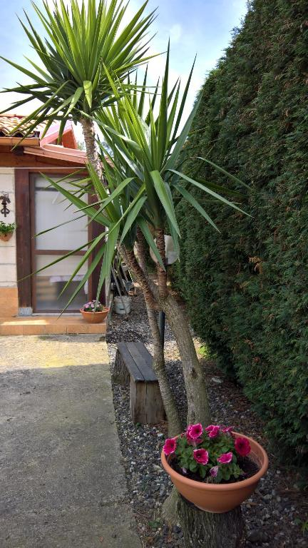 Country house casa sesto maida italy booking gallery image of this property sciox Gallery