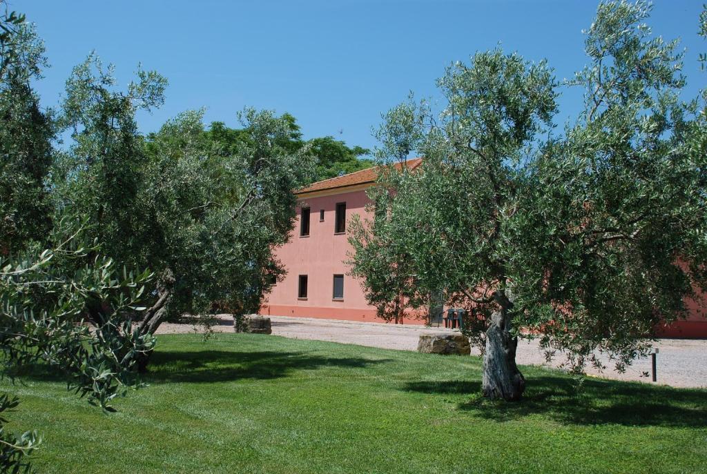 Magliano Agriturismo italia Toscana Coccinelle Le In rqtzBr