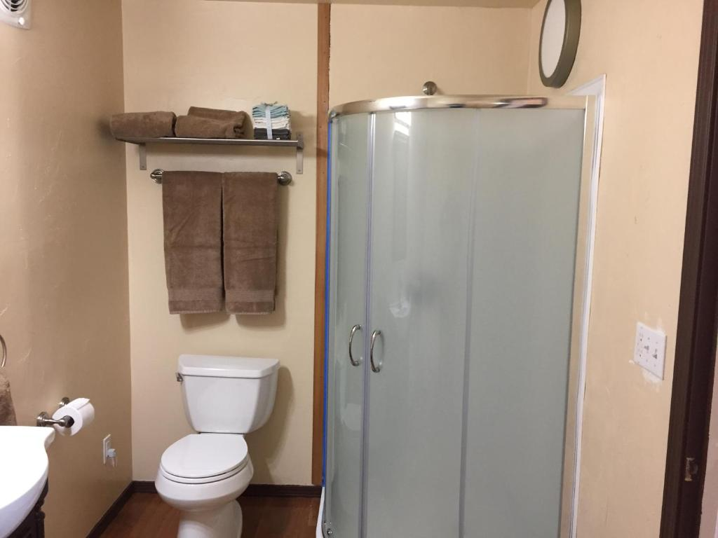 Bathroom With Shower For Disabled In Alaska