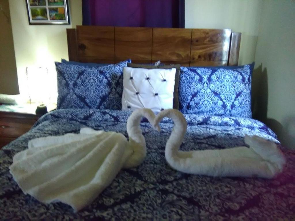 Postelja oz. postelje v sobi nastanitve Olliviere's Falmouth Garden