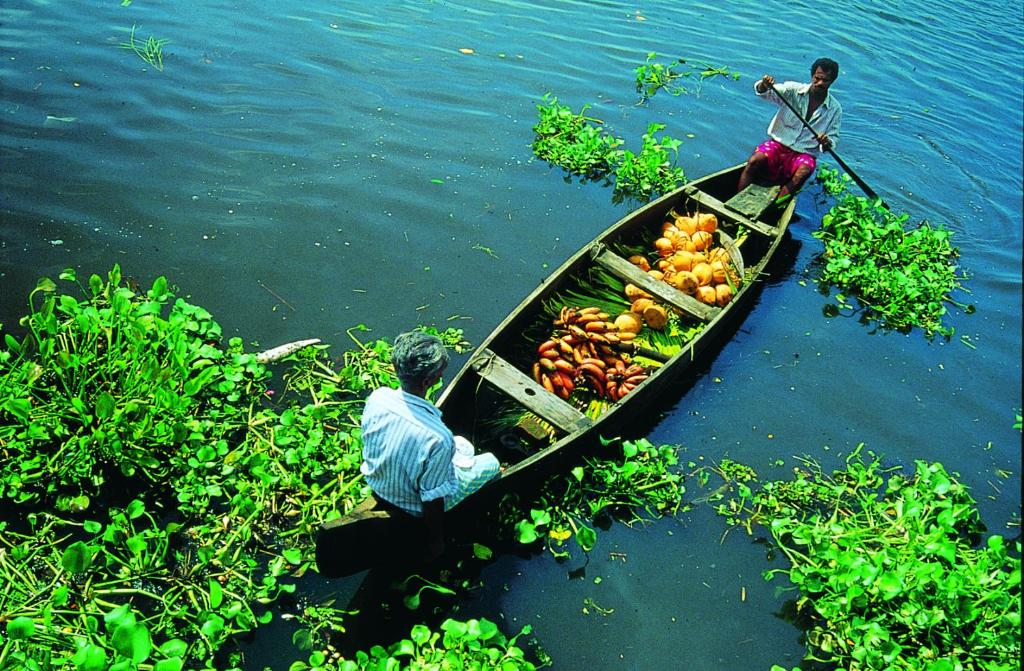 Image result for KEY PRINCIPLES eco friendly tourism in india WALLPAPER