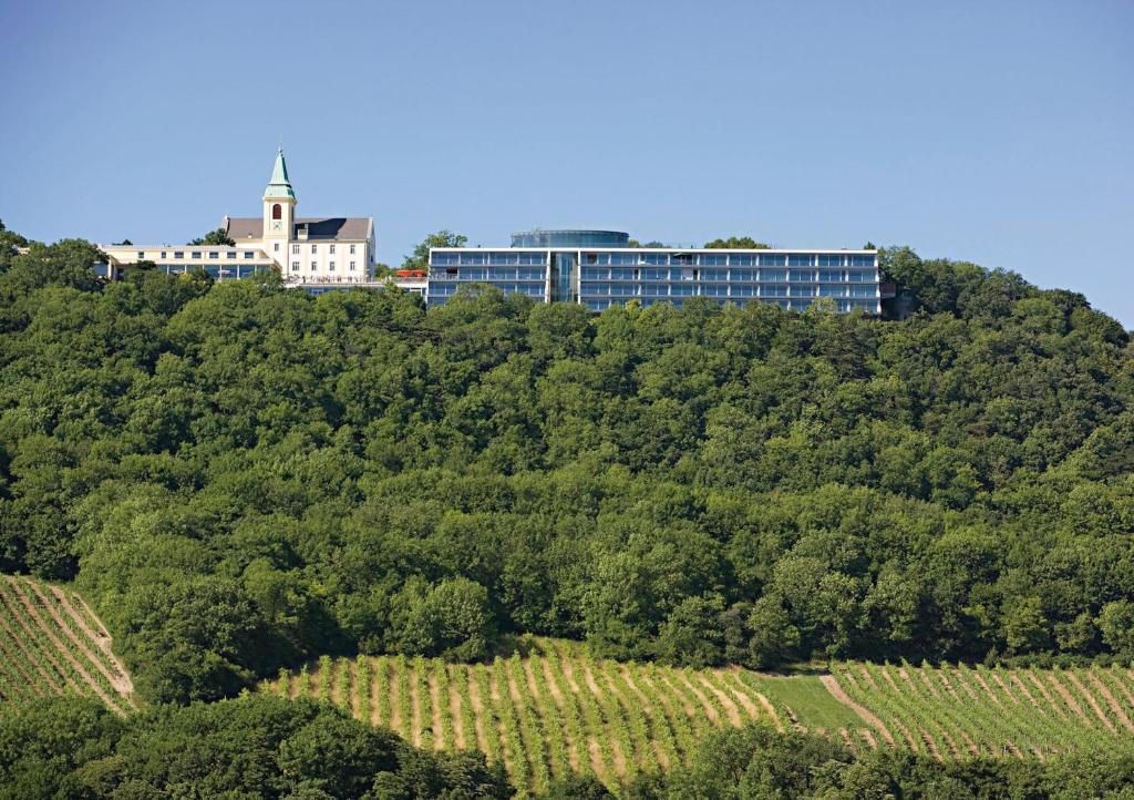 Vienna City Apartments Kahlenberg Austria Bookingcom