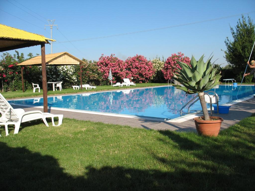 The swimming pool at or near Agriturismo Montalbano