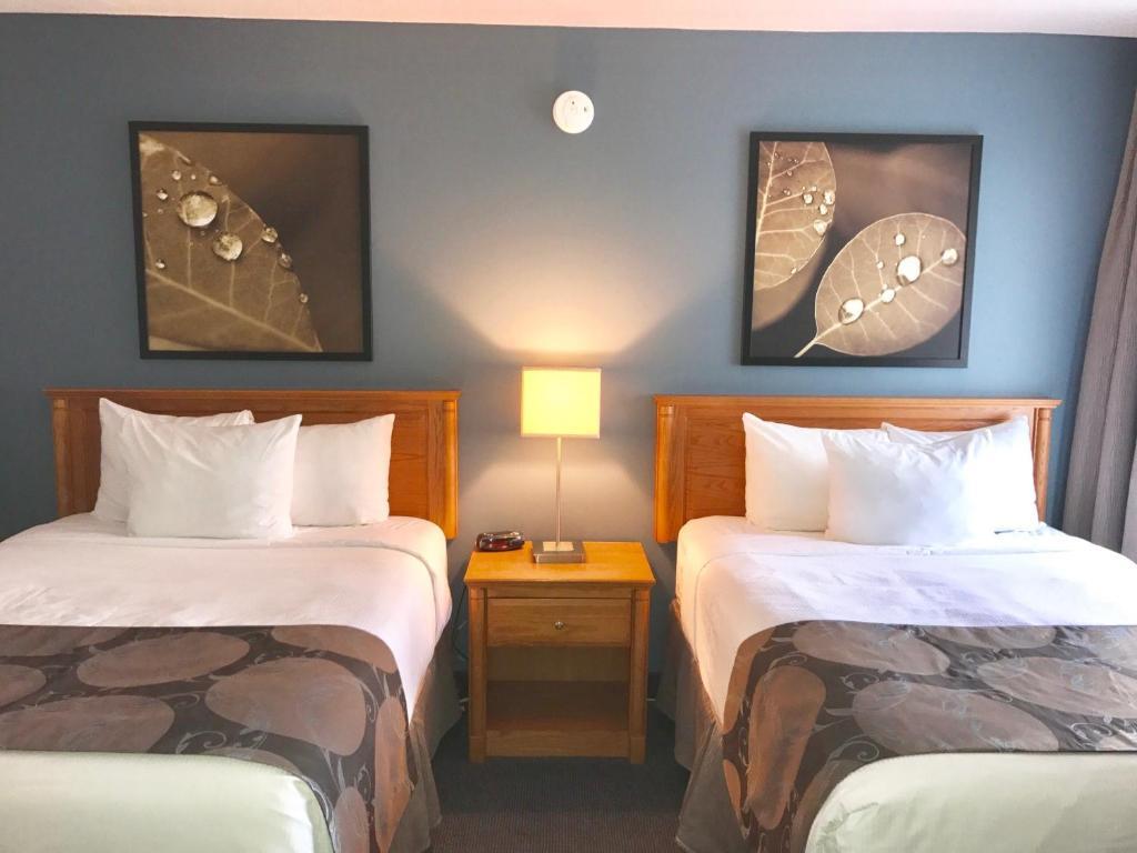 Comfort Inn Rouyn Noranda Deals Up To 69 Off