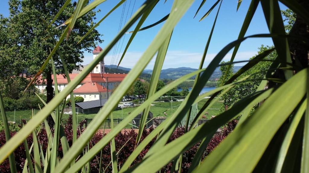 Hotel Fasching Osterreich Sankt Georgen Am Langsee Booking Com
