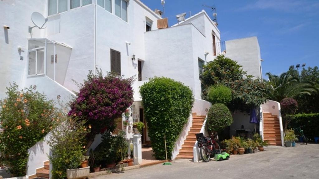 Patio andaluz d nia precios actualizados 2018 - Fotos patio andaluz ...