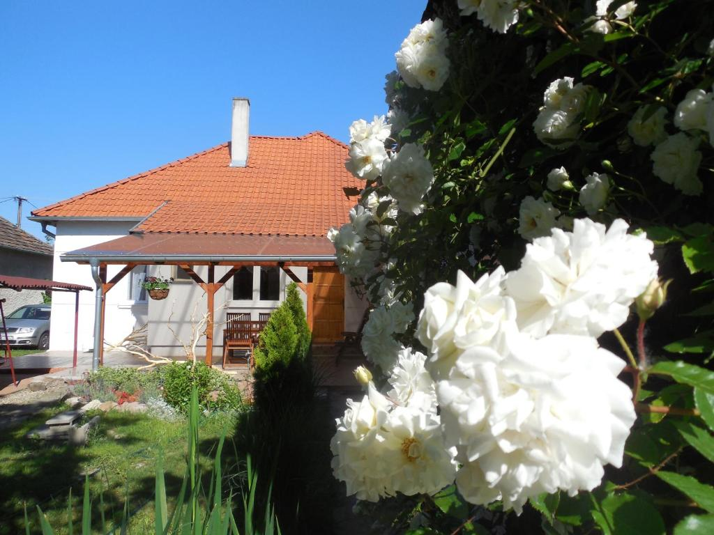Ferienhaus Dunaparti ház (Slowakei Kravany nad Dunajom) - Booking.com