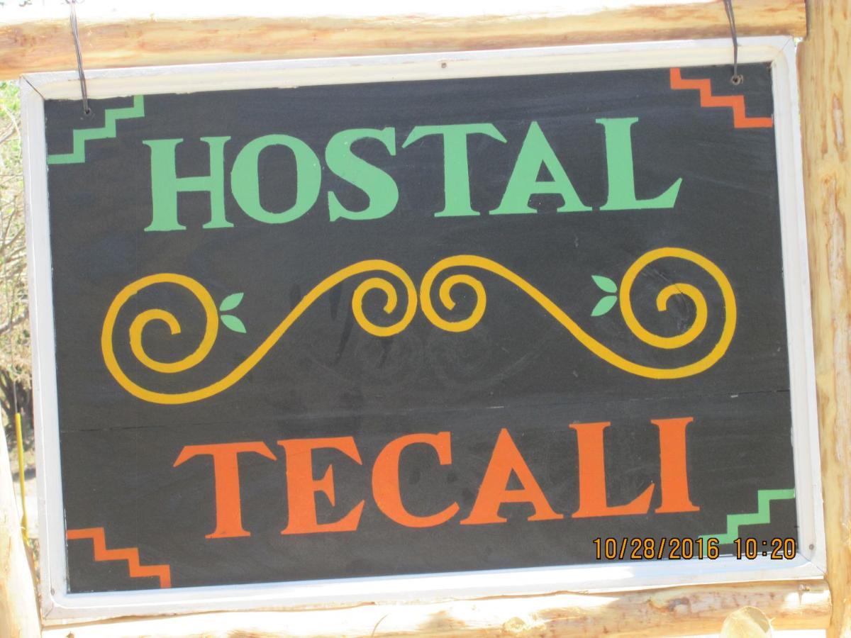 Hostels In Santa Teresa Ometepe