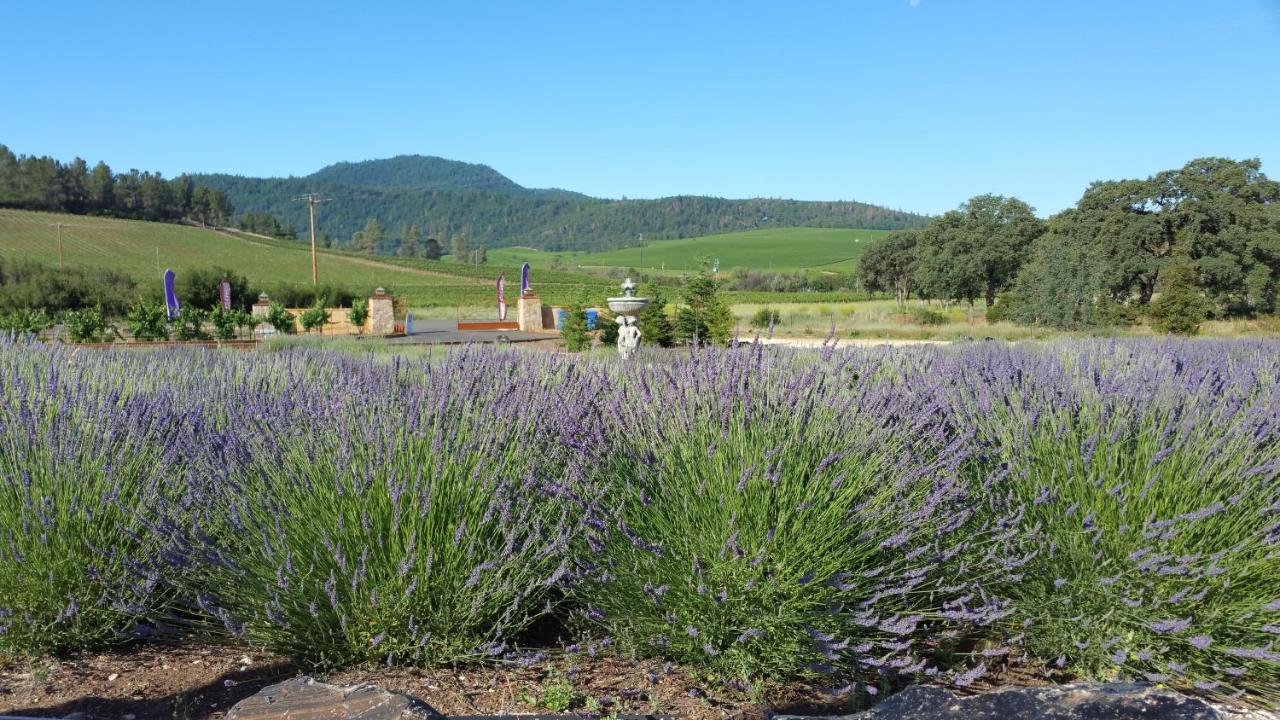 Bed And Breakfasts In Kelseyville California