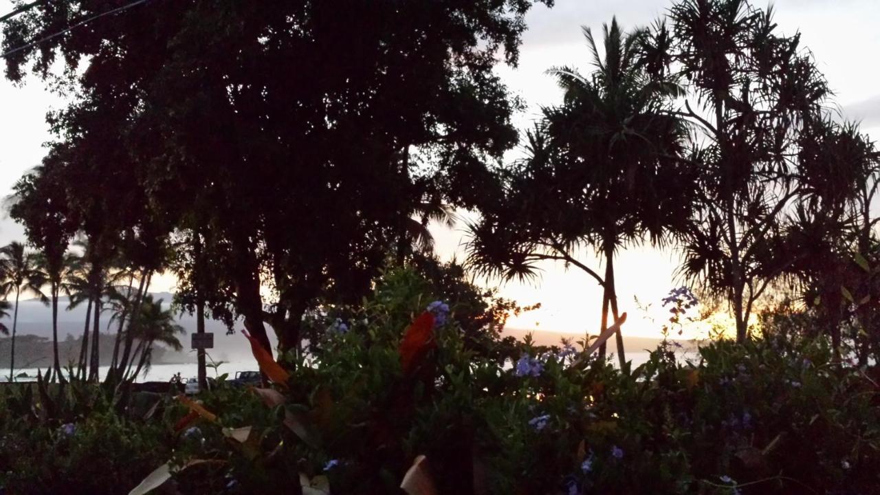 Bed And Breakfasts In Hawaiian Beaches The Big Island