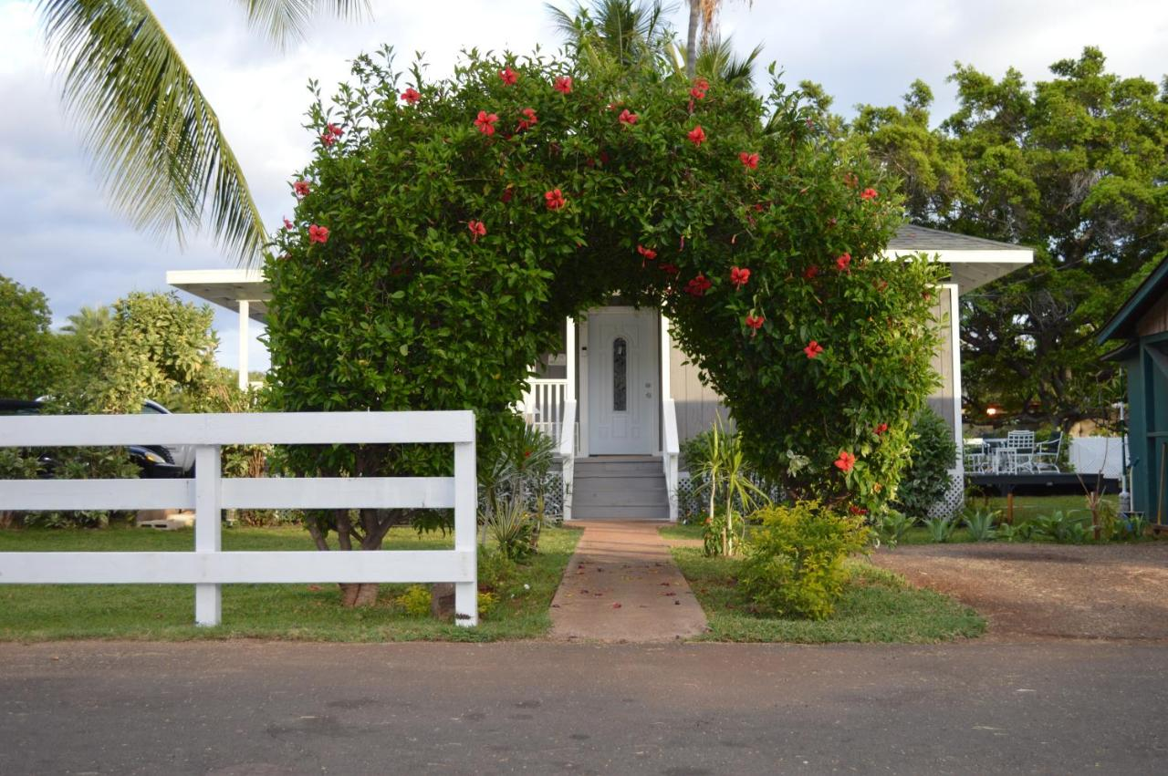 Hostels In Kihei Maui