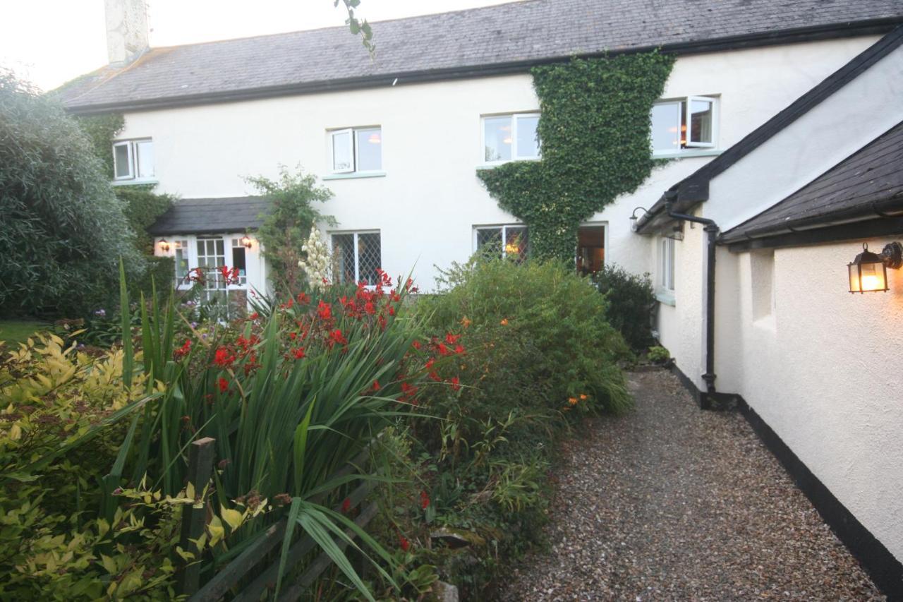 Guest Houses In Rose Ash Devon