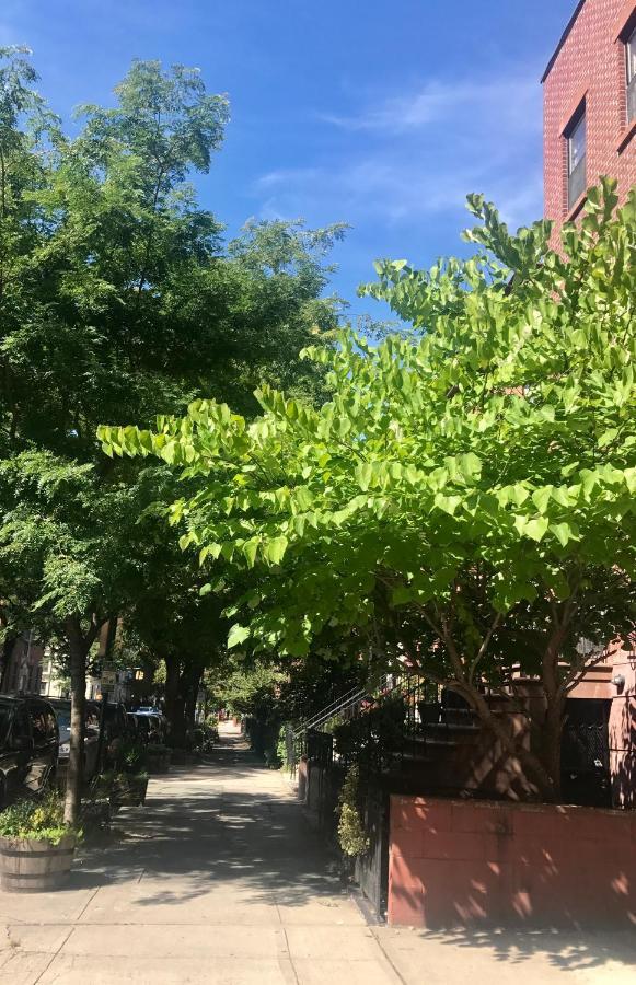 Comfortable Brooklyn Apartment, NY - Booking.com