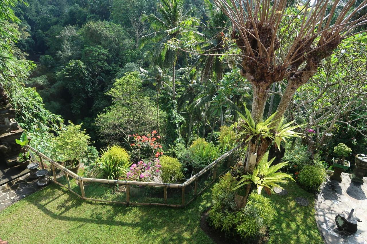 Bali Villa George Buka Di Window Baru