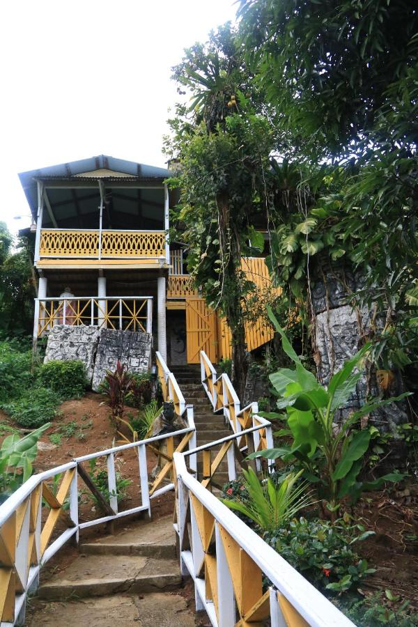 Hostels In Old Point Bocas Del Toro