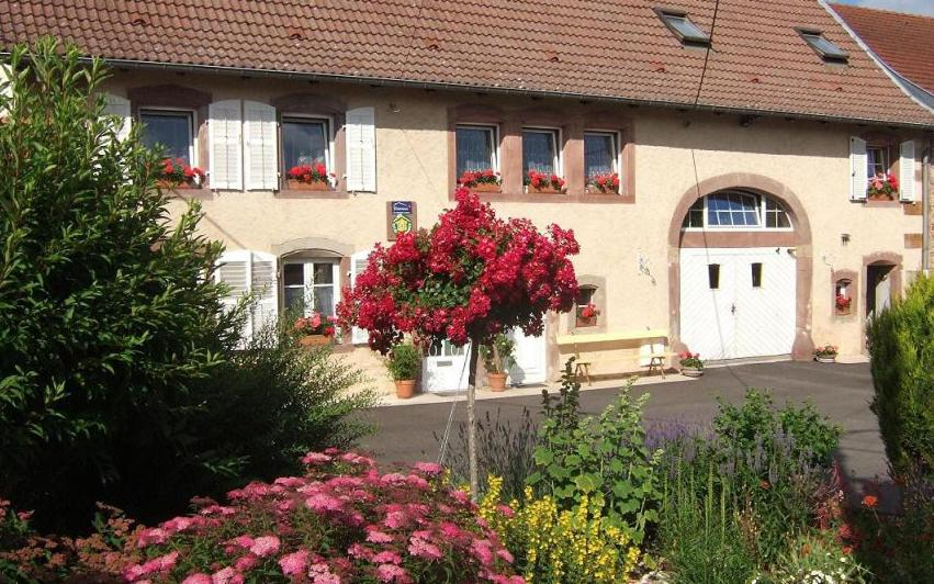Bed And Breakfasts In Rorbach-lès-dieuze Lorraine