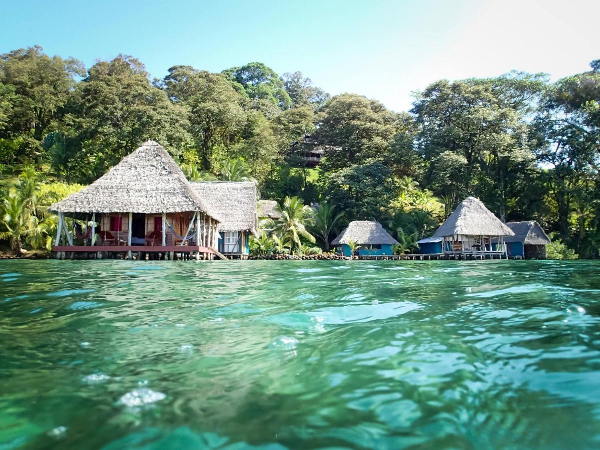 Hotels In Punta Laurel Bocas Del Toro