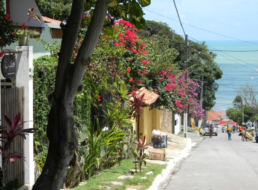 Guest Houses In Ponta Negra Rio Grande Do Norte
