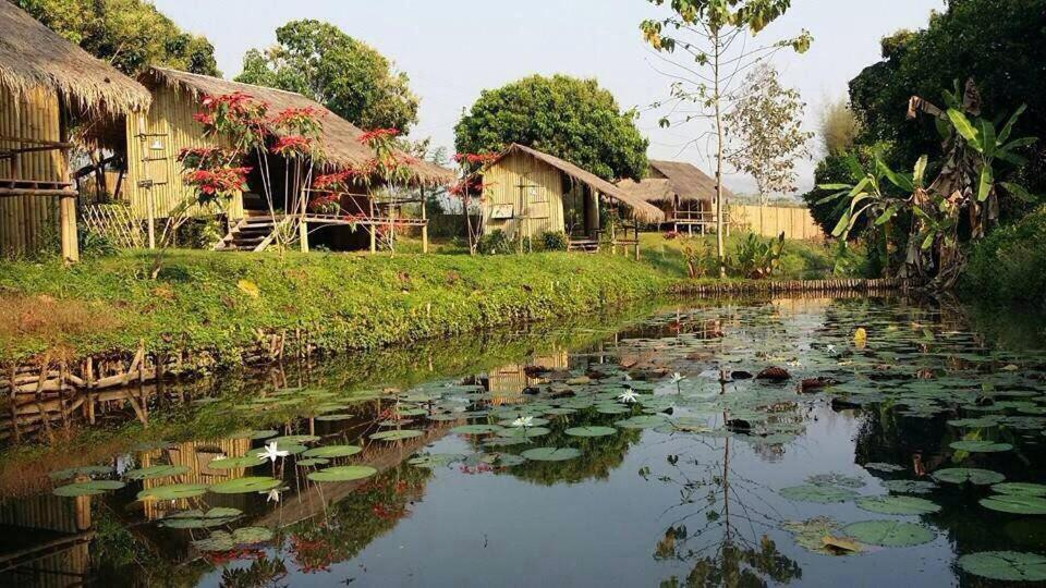 Guest Houses In Ban Phae Buak Ha Chiang Mai Province
