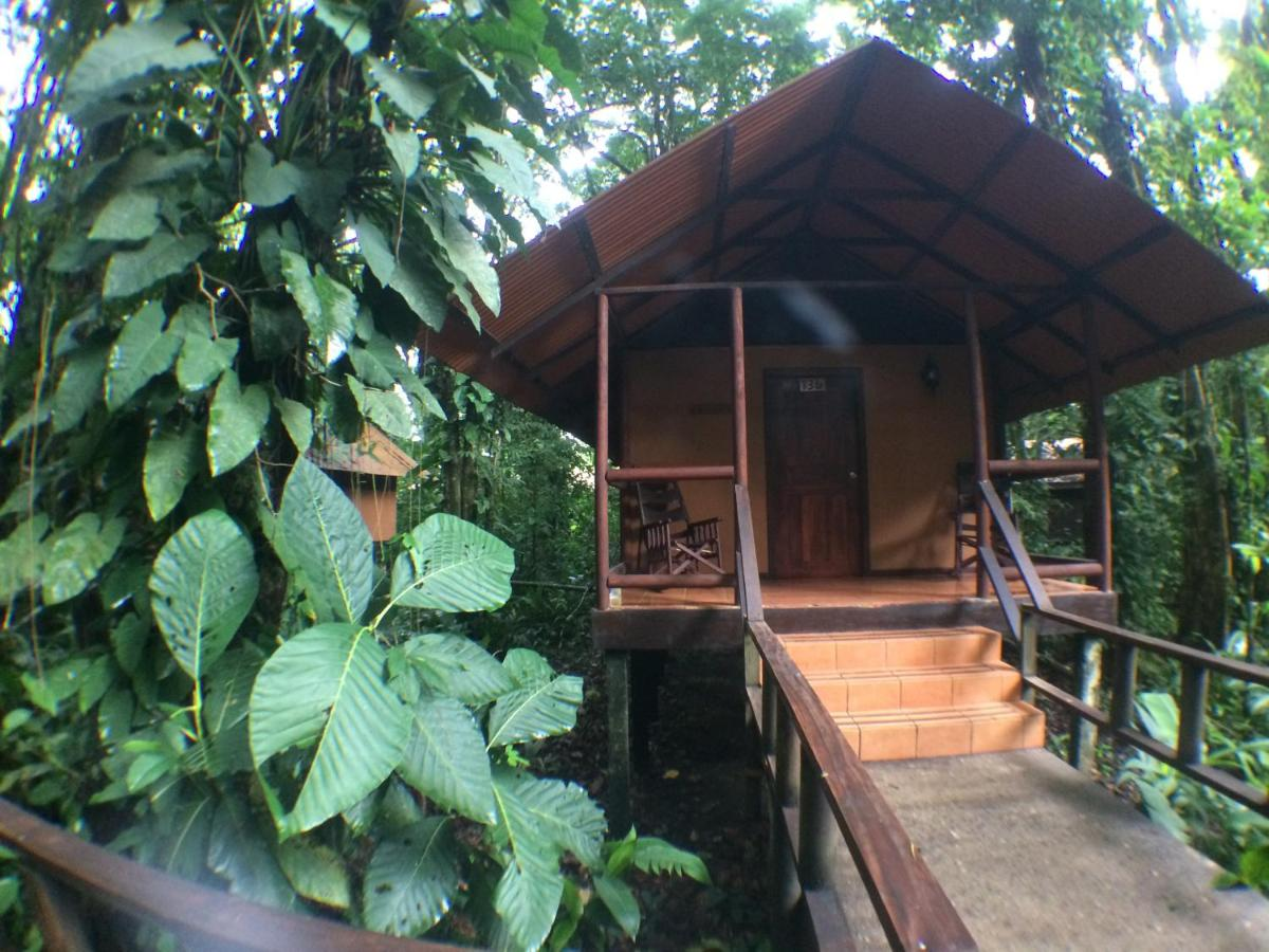 Rana Roja Lodge in Tortuguero