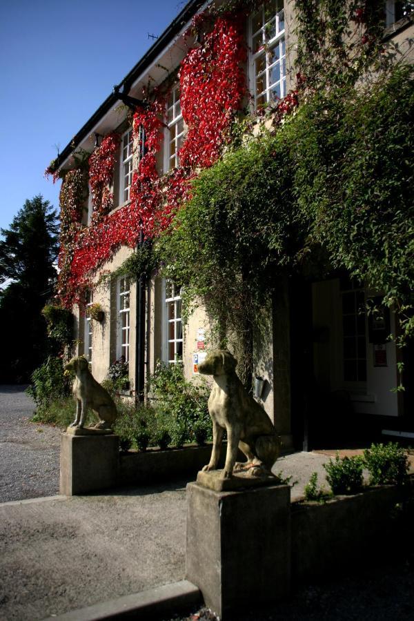 Hotels In Rhondda Glamorgan