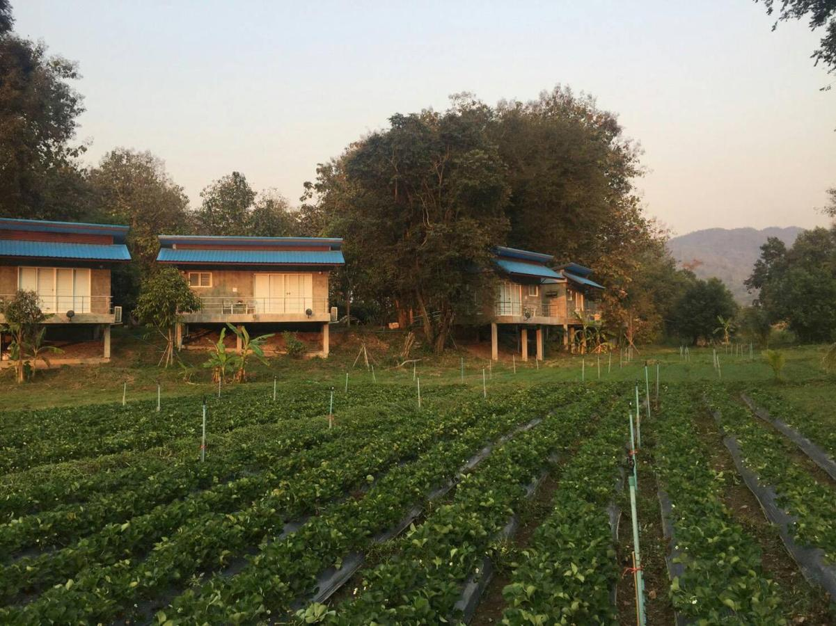 Guest Houses In Ban Mae Sap Nua Chiang Mai Province