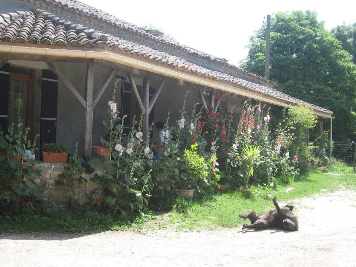 Bed And Breakfasts In Queyssel Aquitaine