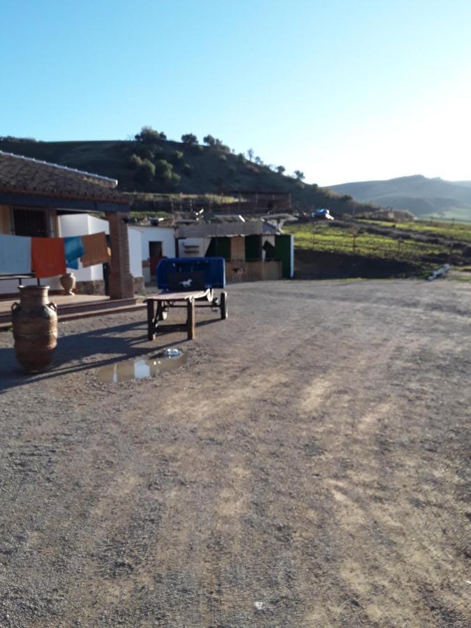 Hostels In Setenil Andalucía