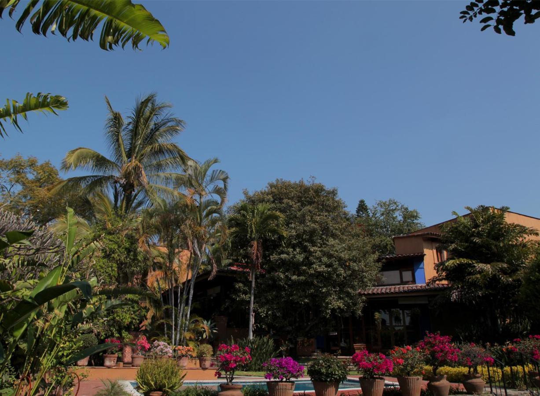Hotels In Acapantzingo Morelos
