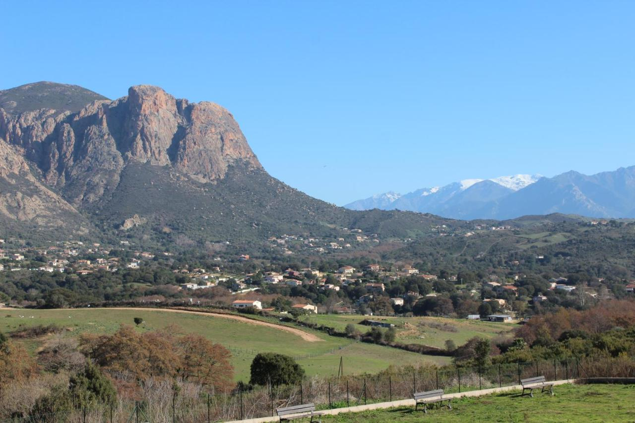 Guest Houses In Ucciani Corsica