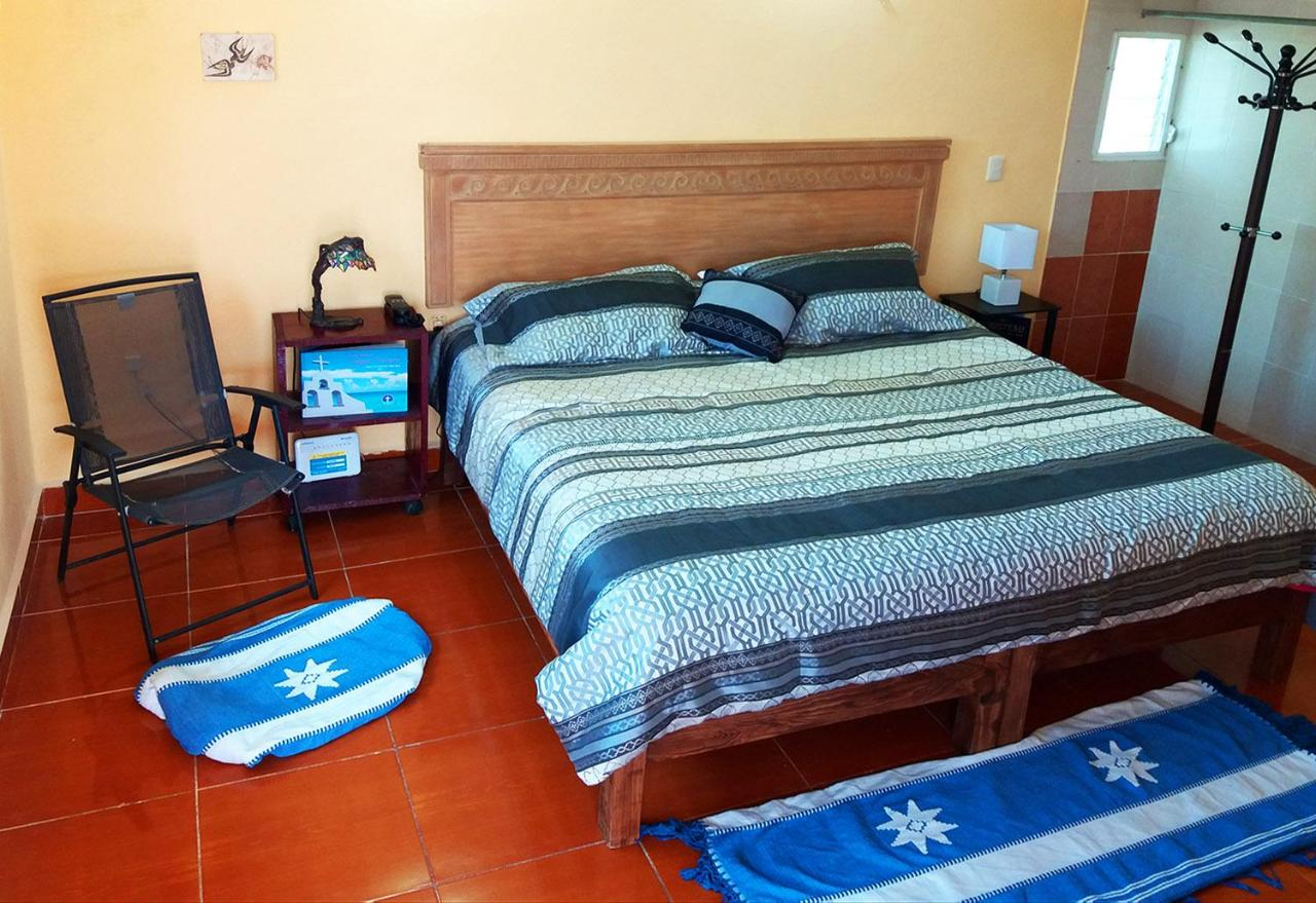 Guest Houses In Cozumel