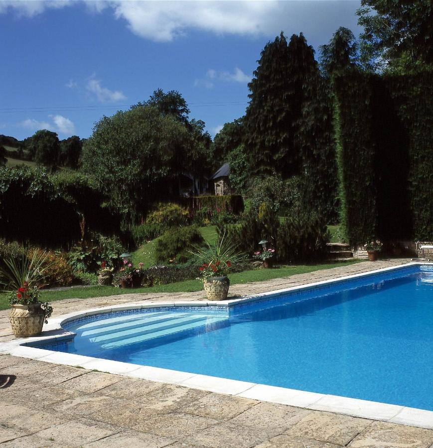 Bed And Breakfasts In Stowford Devon