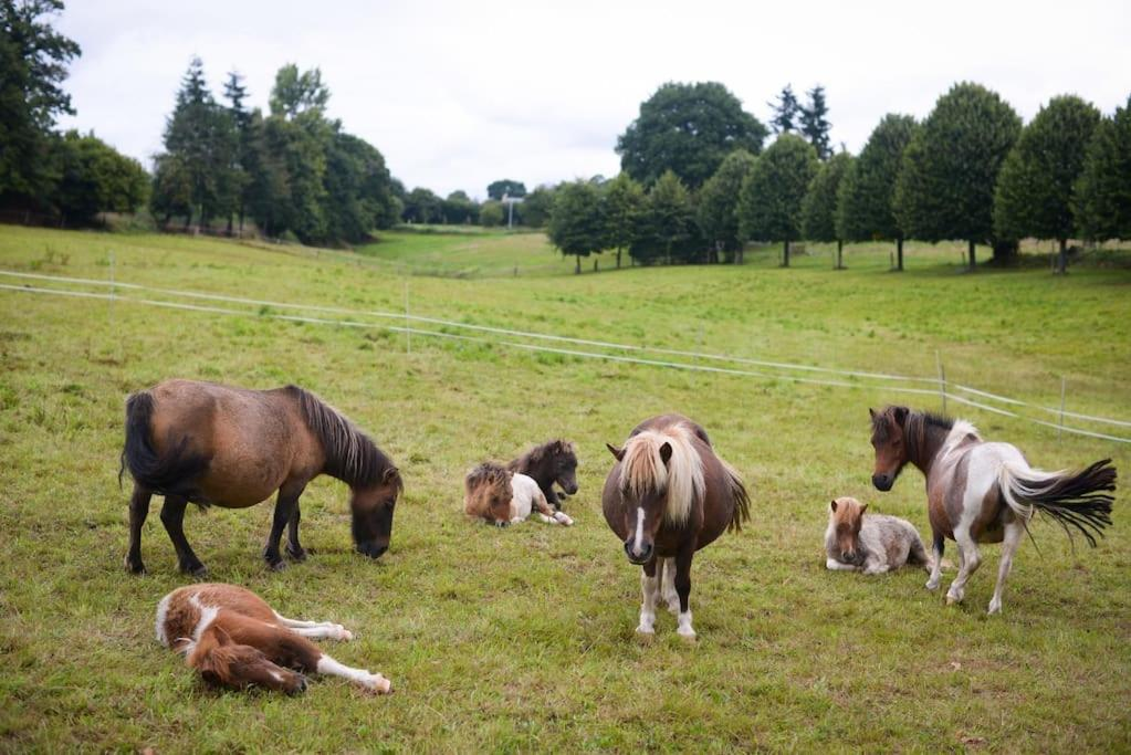 Bed And Breakfasts In Saint-laurent-de-cuves Lower Normandy
