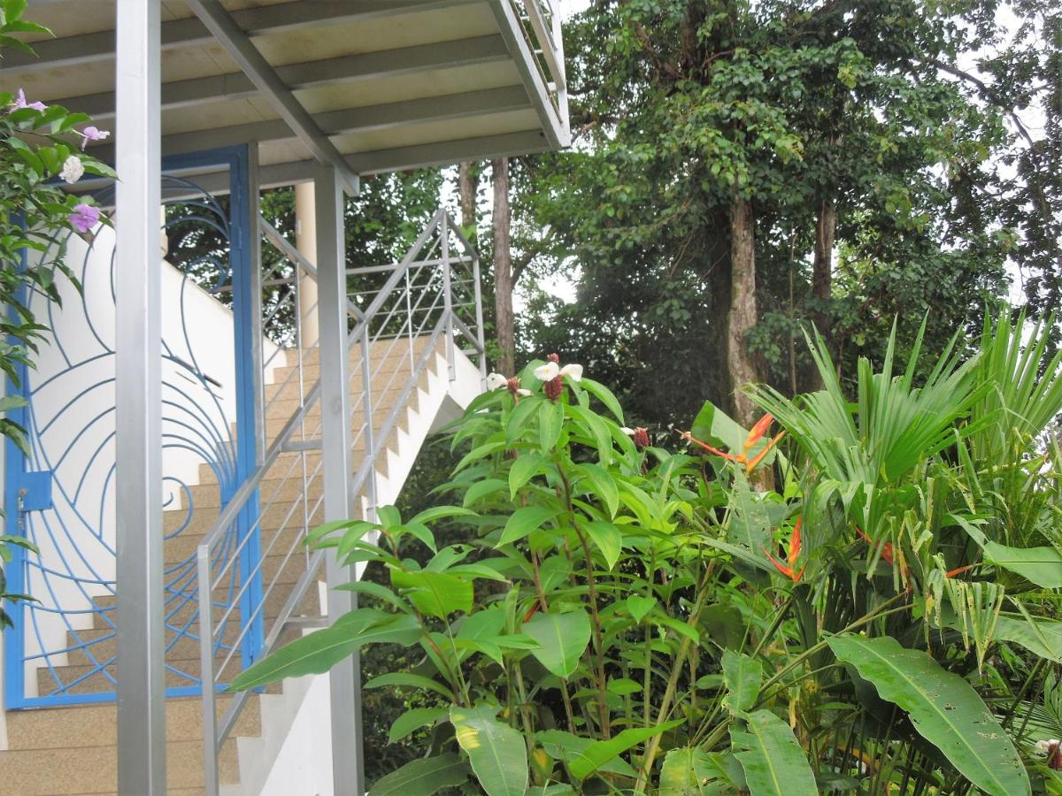 Guest Houses In Tortugal Puntarenas