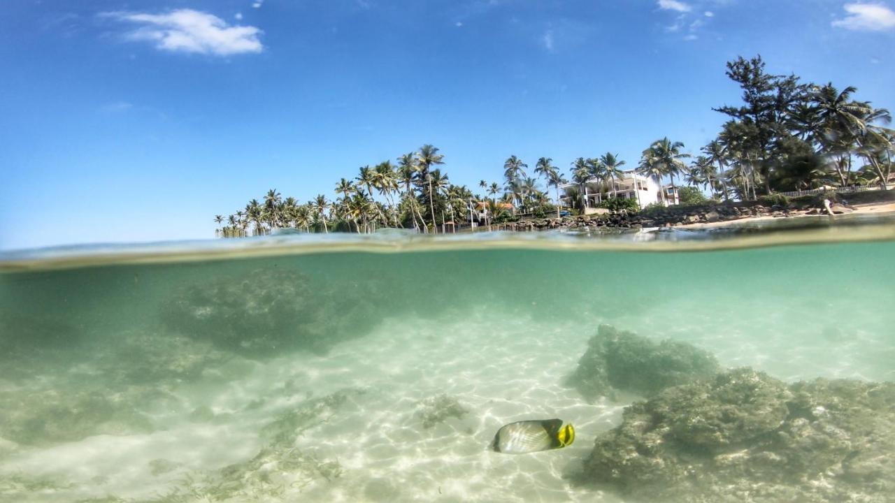 Resort Turtle Eco Beach, Matara, Sri Lanka - Booking.com