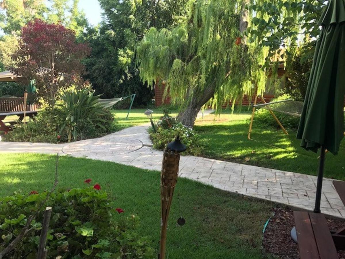 benammi the garden