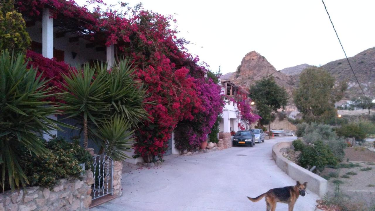 Bed And Breakfasts In Los Loberos Andalucía
