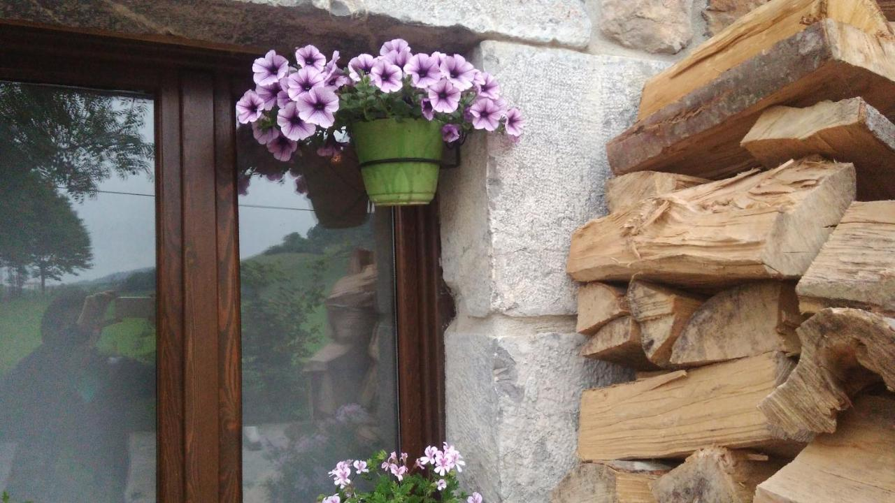 Hostels In Larraul Basque Country
