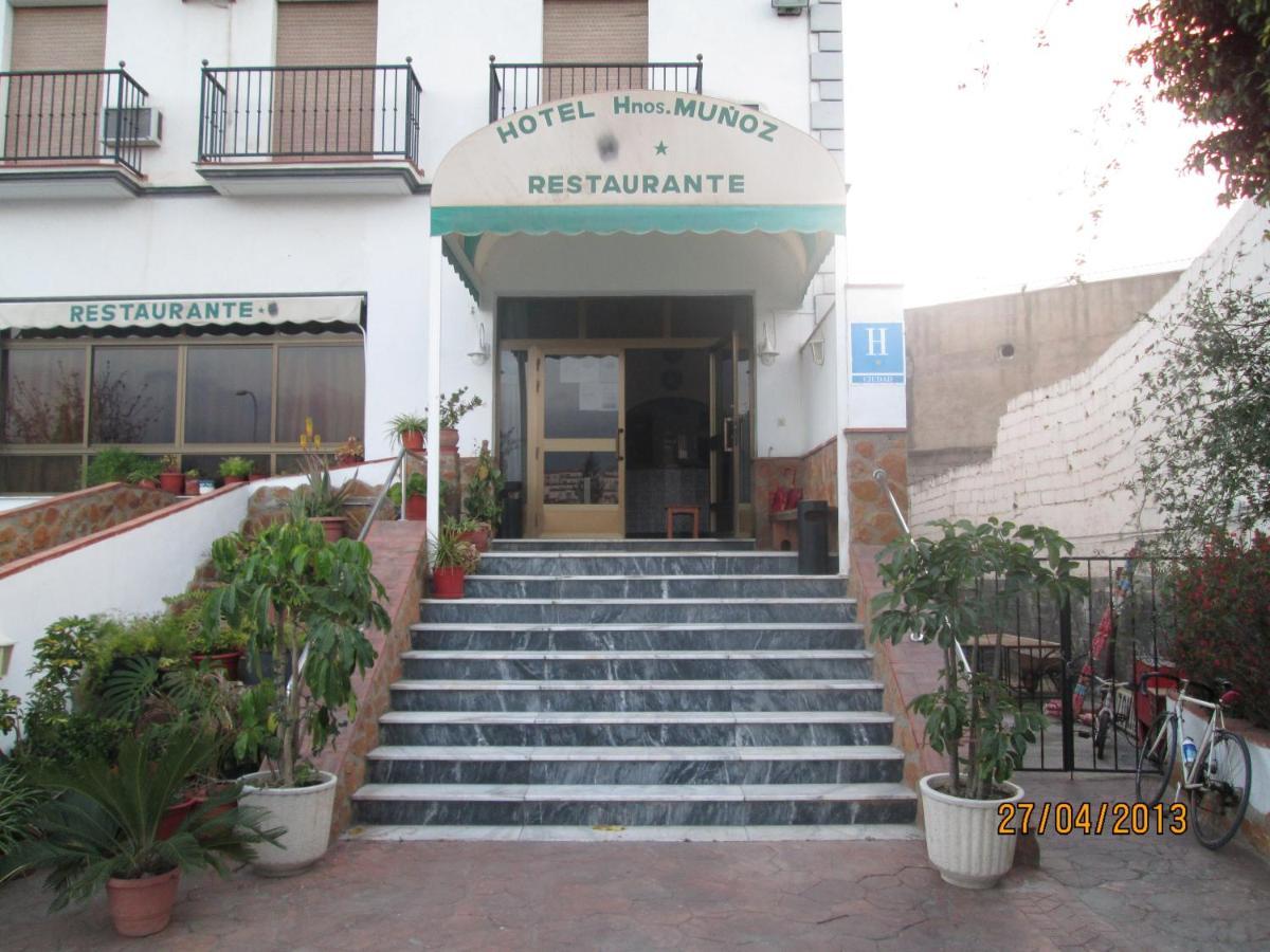 Hotels In Torrenueva Andalucía