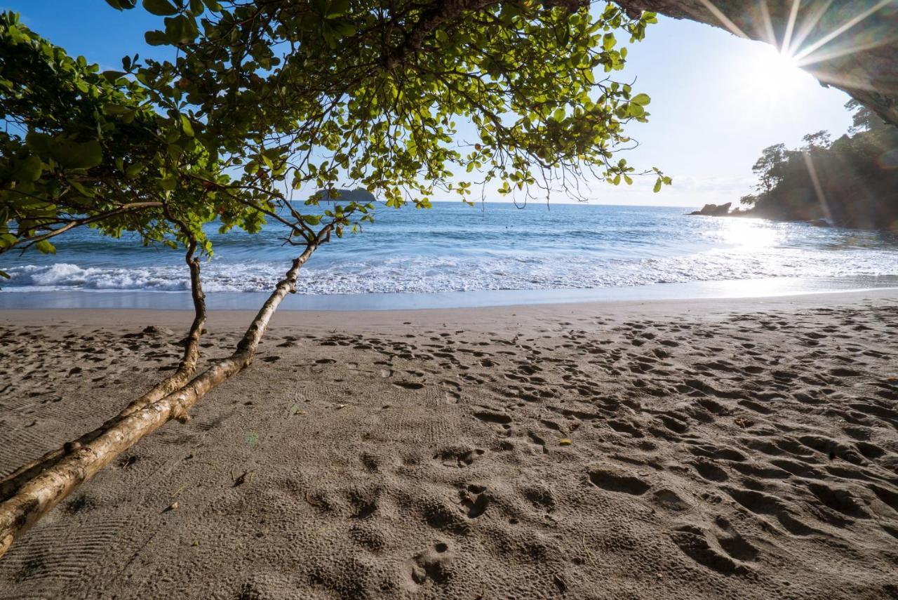 f2a47b7b4b3dd Resort Arenas del Mar Beachfront