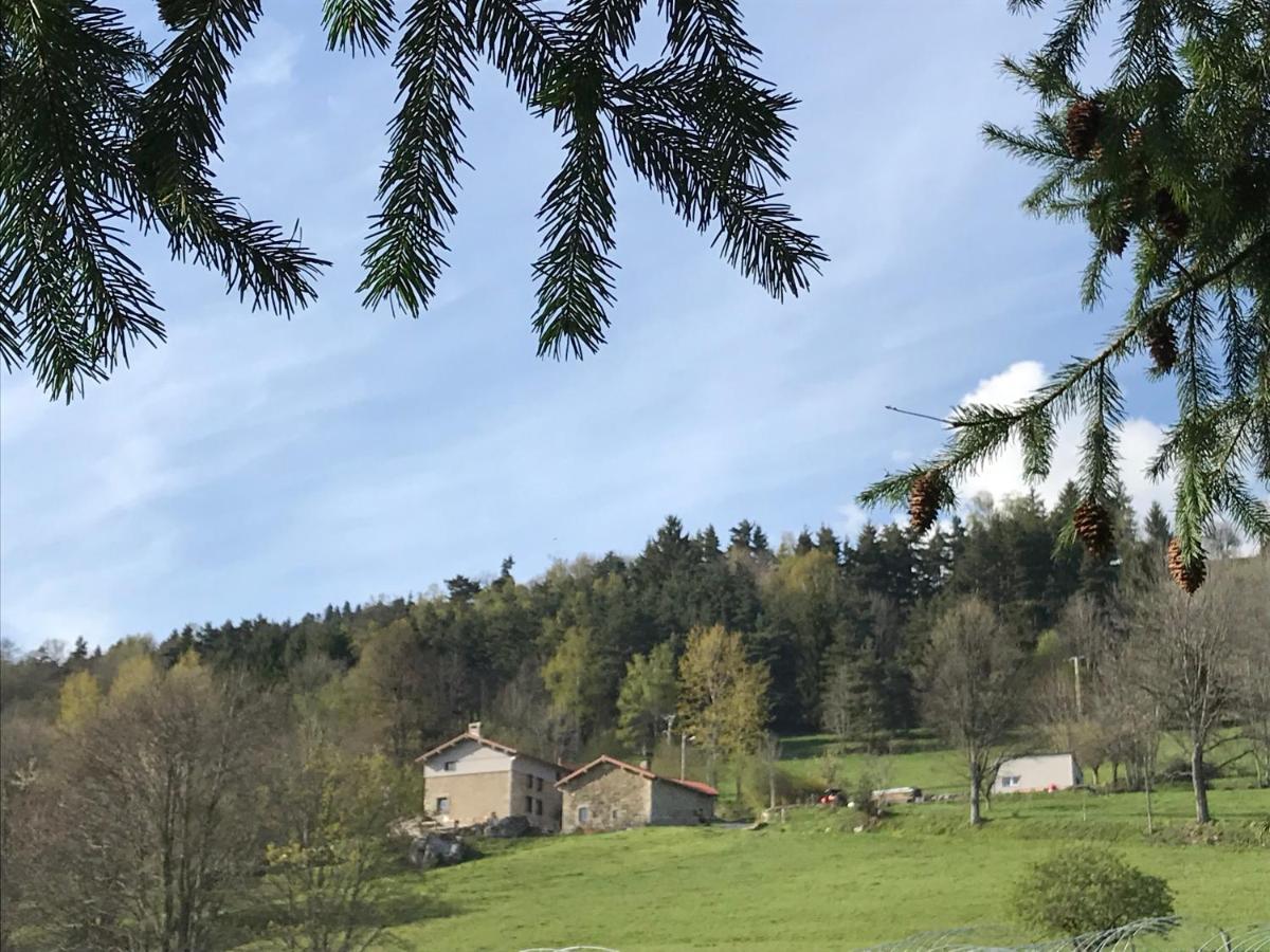 Guest Houses In Saint-amant-roche-savine Auvergne