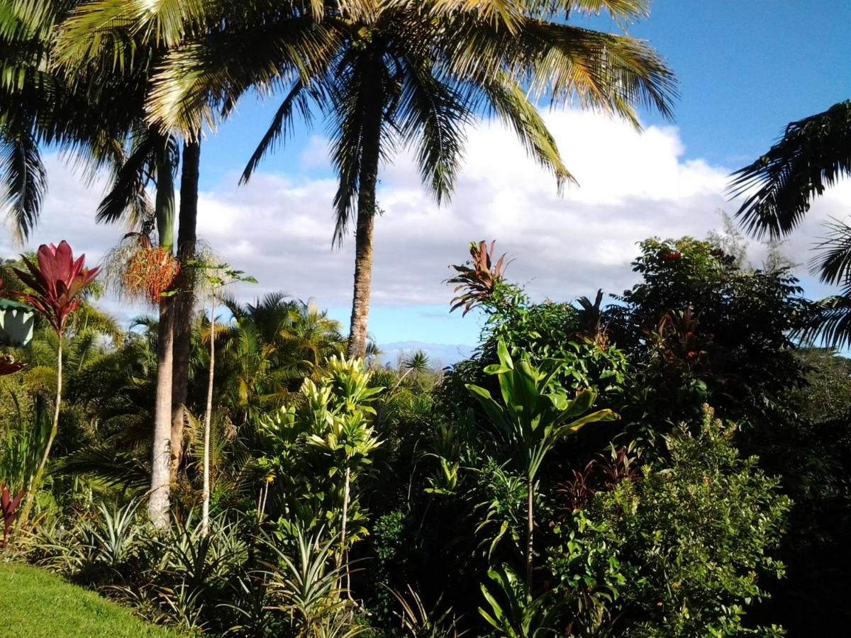 Bed And Breakfasts In Nanawale Estates The Big Island