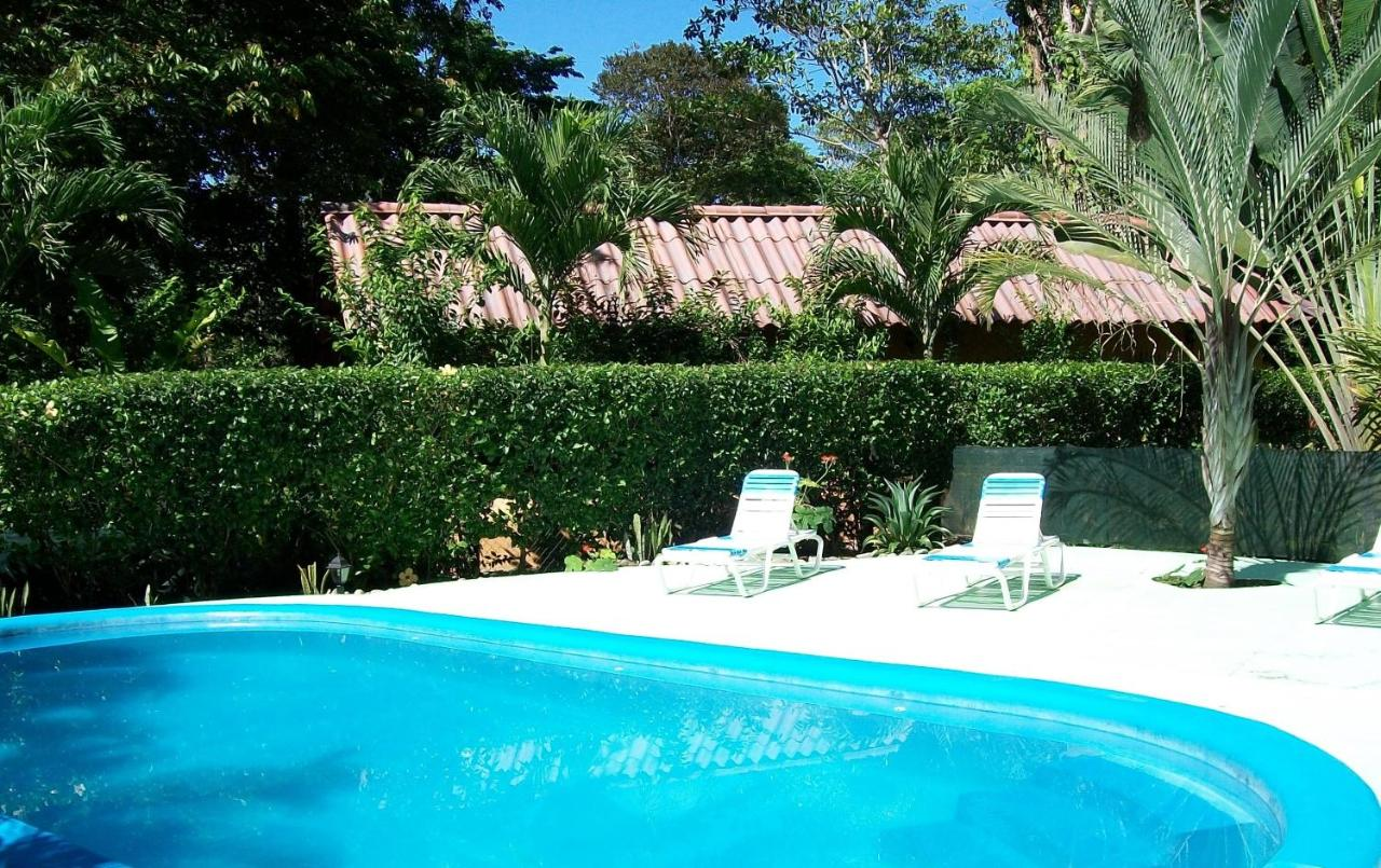 Hotels In Cocles Limon