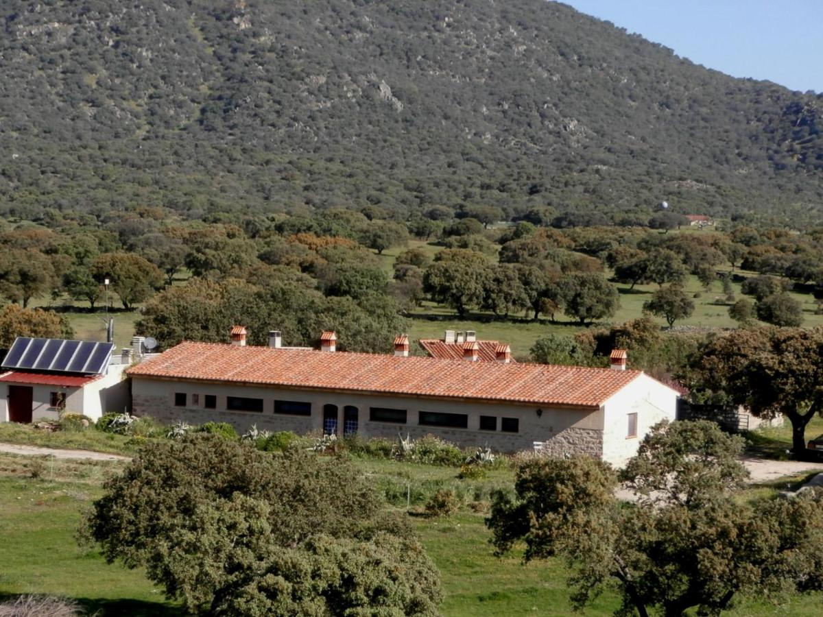 Guest Houses In Medellín Extremadura