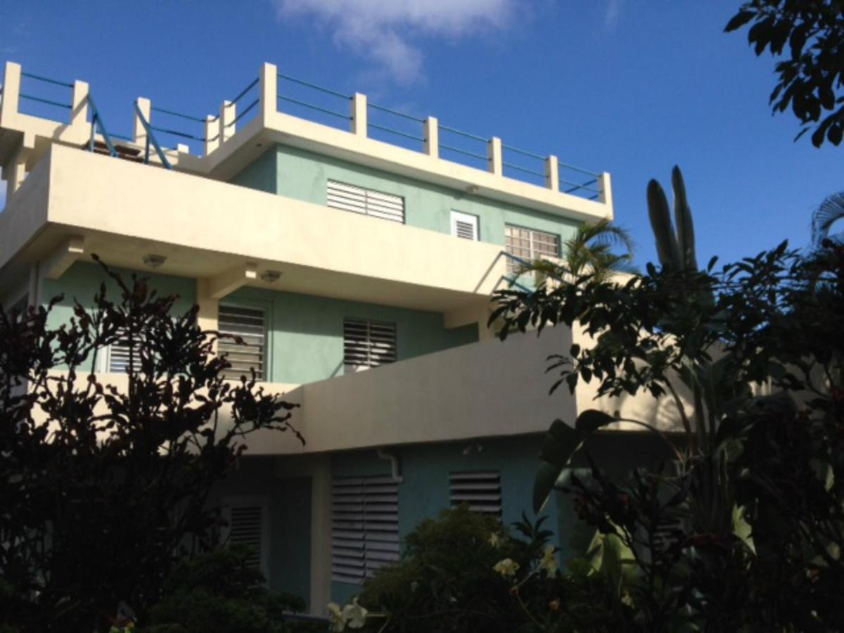 Guest Houses In Esperanza